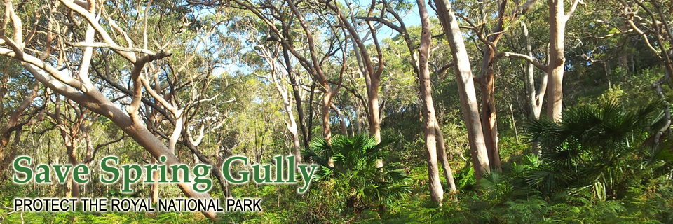 Save Spring Gully, Bundeena